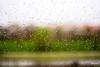Spring Rain (Jakesb_001.NEF) Tags: rain raindrops drops window troughthewindow raining spring macro closeup falling novisad city serbia srbija citylife urbanjungle relaxing view windowview