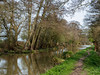 River Wey near Send-E4060232 (tony.rummery) Tags: em10 guildford landscape mft microfourthirds nationaltrust navigation omd olympus reflections river towpath wey woking suttongreen england unitedkingdom gb