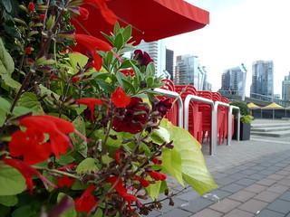 Happy Thursday Floral