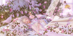 .from this slumber you shall wake, when true love's kiss the spell shall break. (Jasmine * Stardust it's magic) Tags: sleeping beauty magical pure delicate pastel sleep dream true love fairy fairytale roses birds fairies sl second life