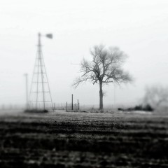 Foggy Morning In Black And White (pam's pics-) Tags: ks kansas us usa america midwest rural farm barn barns windmill washingtoncounty hanoverkansas rain fog january2018 pamspics pammorris appleiphone iphone7 cameraphone mobilephonephotography hipsta hipstamatic inthecountry