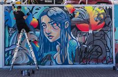 artist at work (Greg Rohan) Tags: theoxking graffitiartist spraycans spraycan cans graffitiart graff graffiti aerosolart spraypaintart spraycanart paintedstreetwalls paintedstreetart urbanwalls urbanart streetart bondibeach sydney australia bondi artist artwork art arte d750 2018 nikkor nikon
