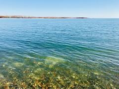 Lake Ontario (Nueva 7) Tags: toronto lakeontario
