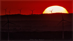 Energy (Peter Daum 69) Tags: sunset sonnenuntergang sun sonne licht light landscape scenery landschaft farbe color windrad turbine ernergie energy canon eos sunrise sonnenaufgang germany photoart fotografie fotograf