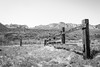 Slinkard Valley, Mono County, California (paccode) Tags: solemn d850 landscape canyon bushes brush blackwhite quiet california abandoned monochrome scary farm fence creepy forgotten serious hills mountain coleville unitedstates us