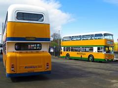 South Shields Busways 268 (SCN268S) & Sunderland Busways 838 (RCU838S) - 22-04-18 (peter_b2008) Tags: southshieldsbusways sunderlandbusways tyneandwearpte twpte 268 scn268s 838 rcu838s leyland atlantean daimler fleetline alexander preserved buses transport buspictures