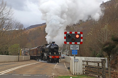 Garve departure (Andrew Edkins) Tags: garve departure steamtrain 1264 lner b1class excursion thegreatbritainxi railwayphotography light levelcrossing incline mainlinesteam scotland uksteam overcast canon geotagged road car april 2018 spring morning