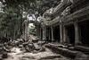Siem Reap - Lara's Legacy (yarns101) Tags: cambodia jungle raider tomb laracroft temple stone rocks siemreap