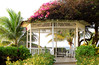 Gazebo By The Sea (Poocher7) Tags: caribbean ocean water jamaica montegobay mobay gazebo palmtree pretty beautiful lovely almondtree bougainvillea flowers blossoms sundaylights
