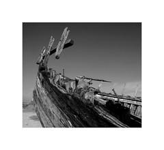 Epave... (kate053) Tags: epave nb normandie portbail sable