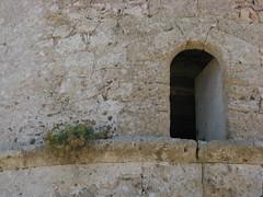 Formentera 2015 018 (montsealmar) Tags: viatges formentera