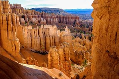 Hoodoos (otterdrivernw) Tags: sunsetpoint xf50140mm xf50140 fujix xt2 fujifilm fuji americanwest nationalparks hoodoos hoodoo brycecanyon