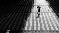 Umbrella Day (Leonegraph) Tags: rain umbrella square architecture perspektive outdoor drausen outside leonegraph streetphotographer streetphotography story urban spontan spontanious candid unposed human street 2018 europe germany deutschland city stadt monochrome bw blanco negro bn sw schwarz weis black white panasonicgx80 panasonic1235mmf28 mft microfourthirds hannover hanover