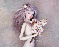 Never forget (pure_embers) Tags: pure laura embers bjd doll dolls england uk girl popovysisters popovy sisters littleowl little owl pureembers owlina embersowlina photography photo ball joint resin portrait fine art lavender wig blossom pastel