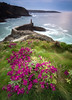 viavelez01 (bertigarcas) Tags: olympus omd em5ii zuiko 918 paisaje landscape marina seascape atardecer sunset viavelez asturias faro lighthouse sea mar