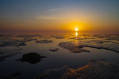 Golden hour (pallefrejvald) Tags: højer tøndermunicipality denmark dk waddensea water goldenhour beach pixelshift horizon lowtide sunset