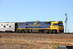 NR27 Indian Pacific Bodallin 31 March 2018 (RailWA) Tags: railwa philmelling nr27 indian pacific bodallin national