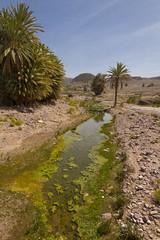 2018-3997 (storvandre) Tags: morocco marocco africa trip storvandre marrakech marrakesh valley landscape nature pass mountains atlas atlante berber ouarzazate desert kasbah ksar adobe pisé