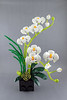 Orchid (bricks.life.idea) Tags: orchid lego flowers flowerarrangement