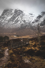 Crossing (raymond_carruthers) Tags: buachailleetivebeag altnafeadh lagangarbhhut westhighlandway landscape tree highlands glencoe snow mountains footbridge moody scottish scotland clouds
