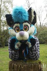 _DSC9975 (MM Furry Photo) Tags: furry fursuit fursuiting tux doggo dog canine