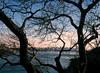 George Washington Bridge 119 (stevensiegel260) Tags: hudsonriver newyork newjersey palisadesinterstatepark georgewashingtonbridge newyorkskyline manhattanskyline