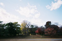 Fujifilm Simple Ace : Fall/Autumn 2017 (Nazra Z.) Tags: disposablecamera fujifilm simpleace film 2017 okayama japan