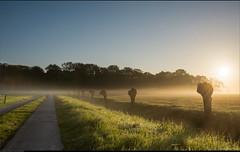 Ter Coulster Sunrise
