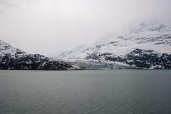 MS Westerdam - 7 Day Alaska May 2018 - Glacier Bay-253.jpg (Cindy Andrie) Tags: alaska hollandamerica d800 nature britishcolumbia beach victoriabc westerdam glacierbay landscape nikon cindyandrie canada andrie glaciers nikond800 cindy