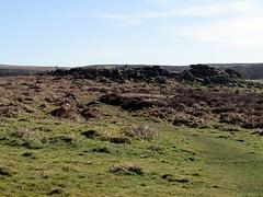 Owler Tor, March 2018 (Dave_Johnson) Tags: rock rocks geology owlertor tor surpriseview surprise view peakdistrict nationalpark peaks hills derbyshire longshaw longshawestate hopevalley