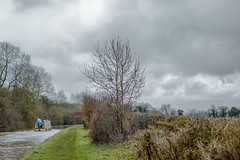 Brinklow Canal Walk 31st March 2018 (boddle (Steve Hart)) Tags: stevestevenhartcoventryunitedkingdomcanon5d4 brinklow canal walk 31st march 2018 steve hart boddle steven bruce wyke road wyken coventry united kingdon england great britain canon 5d mk4 6d 85mm f14 prime 100mm f28 macro wild wilds wildlife life nature natural bird birds flowers flower fungii fungus insect insects spiders butterfly moth butterflies moths creepy crawley winter spring summer autumn seasons sunset weather sun sky cloud clouds panoramic landscape unitedkingdom gb