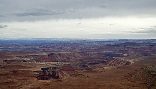 Canyons of the White Rim from Murphy Point