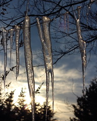 Icicles on a Wire (C.A.Johnston) Tags: hangingoutclothes flickrfriday icicles ice sky onawire hanging