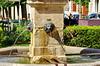 1248 Val de Loire en Août 2017 - Tours (paspog) Tags: tours france valdeloire 2017 fontaine lion