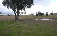 84 Cultowa Lane, Canowindra NSW