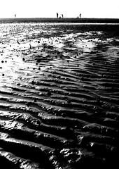 Avant que les ombres ne s'effacent... (Sabine-Barras) Tags: france beach plage sand sable silhouette shadow ombres dark monochrome bnw bw blackandwhite lignes lines water eau