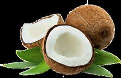 Anglų lietuvių žodynas. Žodis coconut reiškia kokoso riešutas lietuviškai.