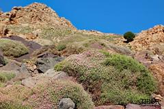 Atlas trekking (morbidtibor) Tags: africa northafrica morocco desert atlas atlasmountains toubkal trekking hiking