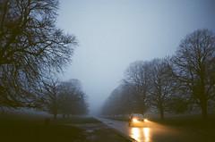(Dandy's Warden) Tags: contax contaxt2 kodak kodakgold film foggy rainy depressing weather england north yellow blue car roadtrip nothing 35mm filmisnotdead filmphotography cinematic carlzeiss mist underexposed