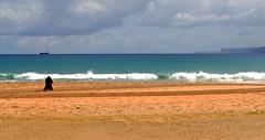 Mi pequeño homenaje al fotógrafo desconocido (alfonsocarlospalencia) Tags: fotógrafo olas cantabria santander segunda playa horizonte barco nubes azul blanco verde artista líneas horizontales rompiente luz septiembre encuadre composición pisadas naturaleza borrasca