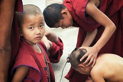 0717 The Haircut (Hrvoje Simich - gaZZda) Tags: haircut people boy child red buddhist monks swayambhunath nepal nikon nikond750 nikkor283003556 gazzda hrvojesimich