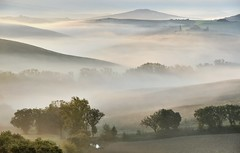 *Val d'Orcia @ Valley of Poetry II* (Albert Wirtz @ Landscape and Nature Photography) Tags: sanquiricodorcia valdorcia valleyofpoetry poetry landscape paesaggi paysages campo italia italien italy toskana tuscany toscana fog mist misty foggy nebbia laniebla brume bruma brouillard natur nature natura light licht mixoffogandlight sunrise sonnenaufgang pienza tree neblig dunstig gegenlicht backlight naturepoetry goldenhour goldenestunde twilight poetisch epic filter grauverlauffilter filterleend09soft paisaje paysagens campagna
