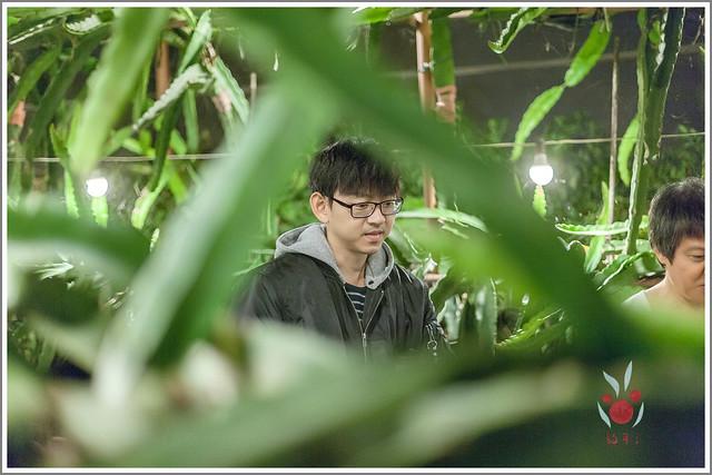 火龍果園星光野餐Ⅱ 找地瓜 烤地瓜 吃地瓜 (27)