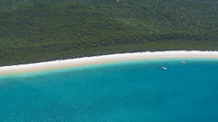 No water, no life. No blue, no green. Sylvia Earle (druzi) Tags: whitehaven whitehavenbeach whitsunday whitsundayisland island australia queensland beach blue green sea ocean barrierreef greatbarrierreef reef park nature mare oceano verde parco barrieracorallina