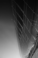 Spot the O2 (fjnige) Tags: architecture london plane aeroplane aircraft reflections glass sky building monochrome blackandwhite nikon d7100 sigma
