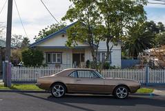 Moonee Ponds (Westographer) Tags: mooneeponds melbourne australia westernsuburbs suburbia streetscape pontiac pontiacfirebird parked house home
