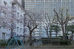 chaos_1470559 (strange_hair) Tags: chaos street funabashi apartment building winter park
