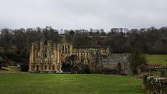 Rievaulx Abbey - 2 (Patrick Cray) Tags: abbey englishheritage northyorkshire rievaulxabbey winter historical monastery ngc