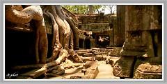 FLcambodge Angkor