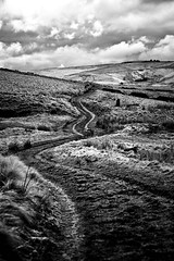 The Long and Winding Road (Missy Jussy) Tags: thelongandwindingroad clouds sky road path hills fields mono monochrome moodylandscape moorland moors dogwalk light blackwhite blackandwhite bw outdoor outside countryside rochdale landscape lancashire pennines canon 5d canon5dmarkll canon5d canoneos5dmarkii 70200mm ef70200mmf4lusm ef70200mm canon70200mm
